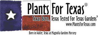 Plants For Texas
